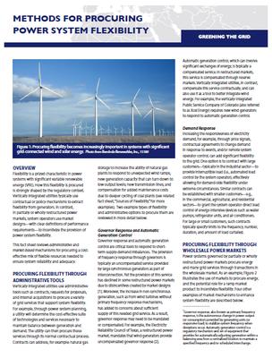 Methods for Procuring Power System Flexibility